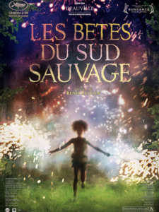 betes-sud-sauvage