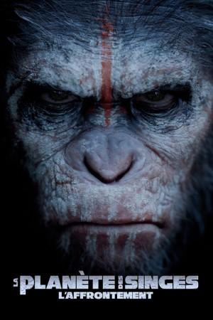 planete-des-singes-affrontement