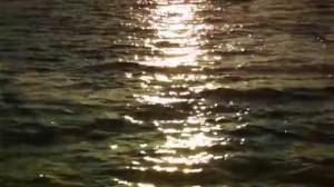 [vidéo] Allahs-Las – Worship The Sun