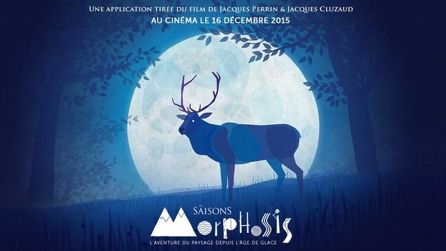 morphosis2